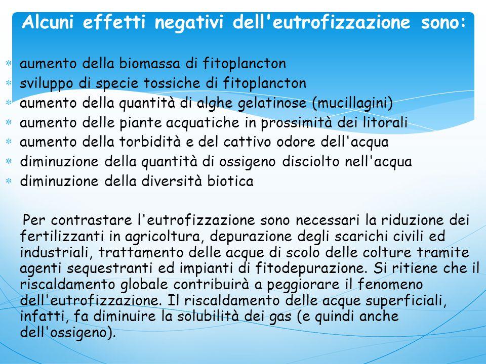 Alcuni effetti negativi dell eutrofizzazione sono: