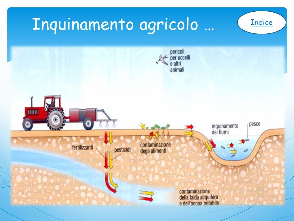 Inquinamento agricolo …