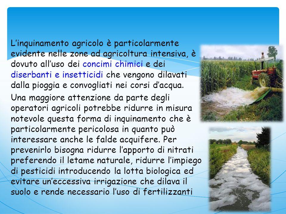 L'inquinamento agricolo è particolarmente evidente nelle zone ad agricoltura intensiva, è dovuto all'uso dei concimi chimici e dei diserbanti e insetticidi che vengono dilavati dalla pioggia e convogliati nei corsi d'acqua.