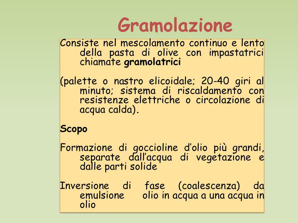 Gramolazione Consiste nel mescolamento continuo e lento della pasta di olive con impastatrici chiamate gramolatrici.
