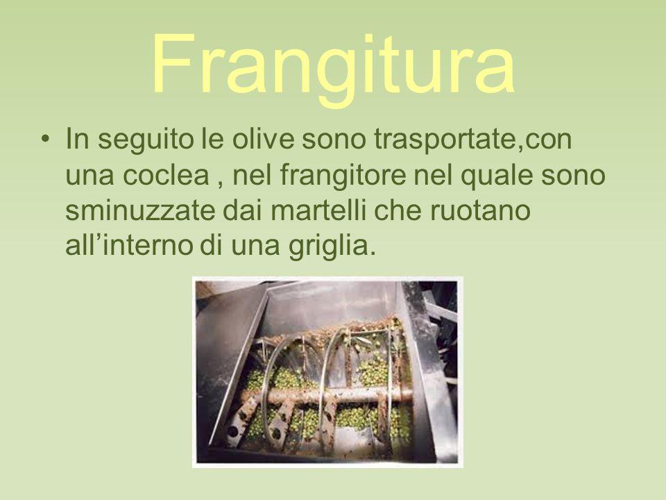 Frangitura