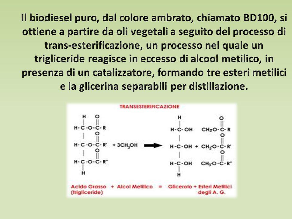 Il biodiesel puro, dal colore ambrato, chiamato BD100, si ottiene a partire da oli vegetali a seguito del processo di trans-esterificazione, un processo nel quale un trigliceride reagisce in eccesso di alcool metilico, in presenza di un catalizzatore, formando tre esteri metilici e la glicerina separabili per distillazione.