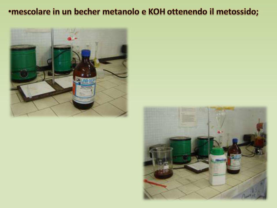 mescolare in un becher metanolo e KOH ottenendo il metossido;