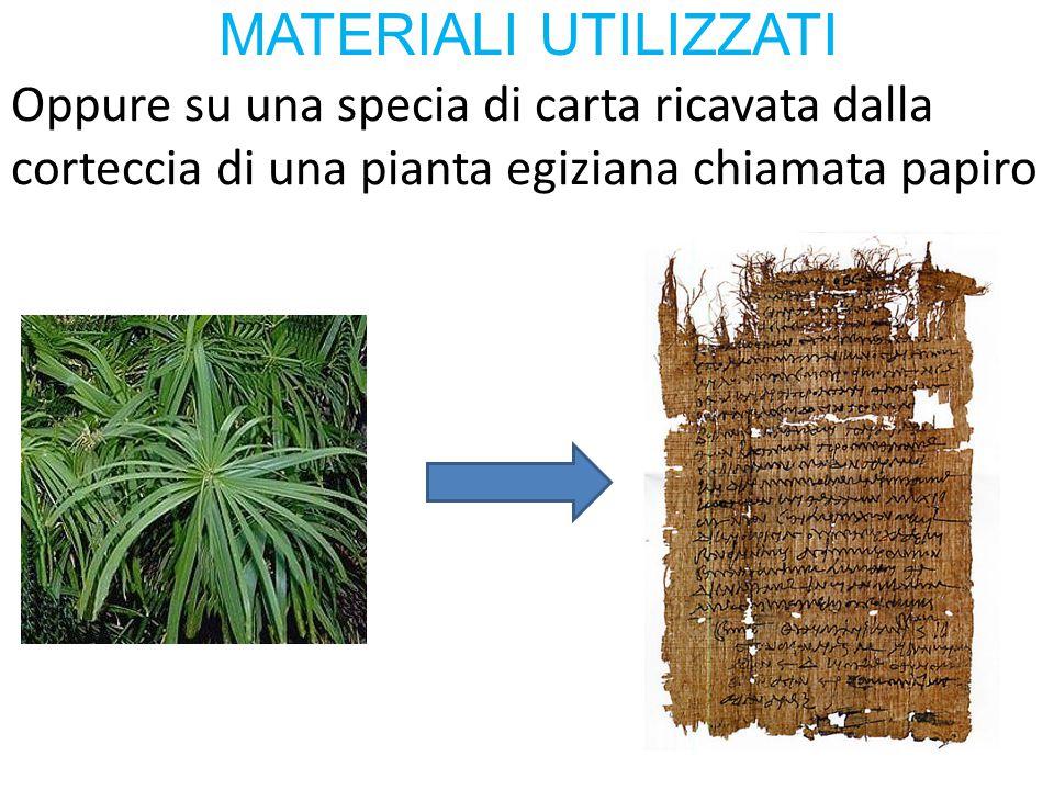 MATERIALI UTILIZZATI Oppure su una specia di carta ricavata dalla corteccia di una pianta egiziana chiamata papiro.