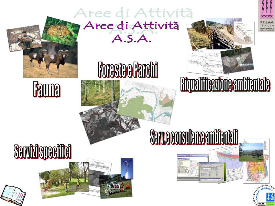 Aree di Attività A.S.A. Foreste e Parchi Riqualificazione ambientale