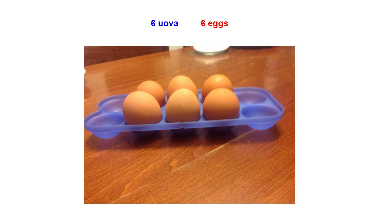 6 uova 6 eggs