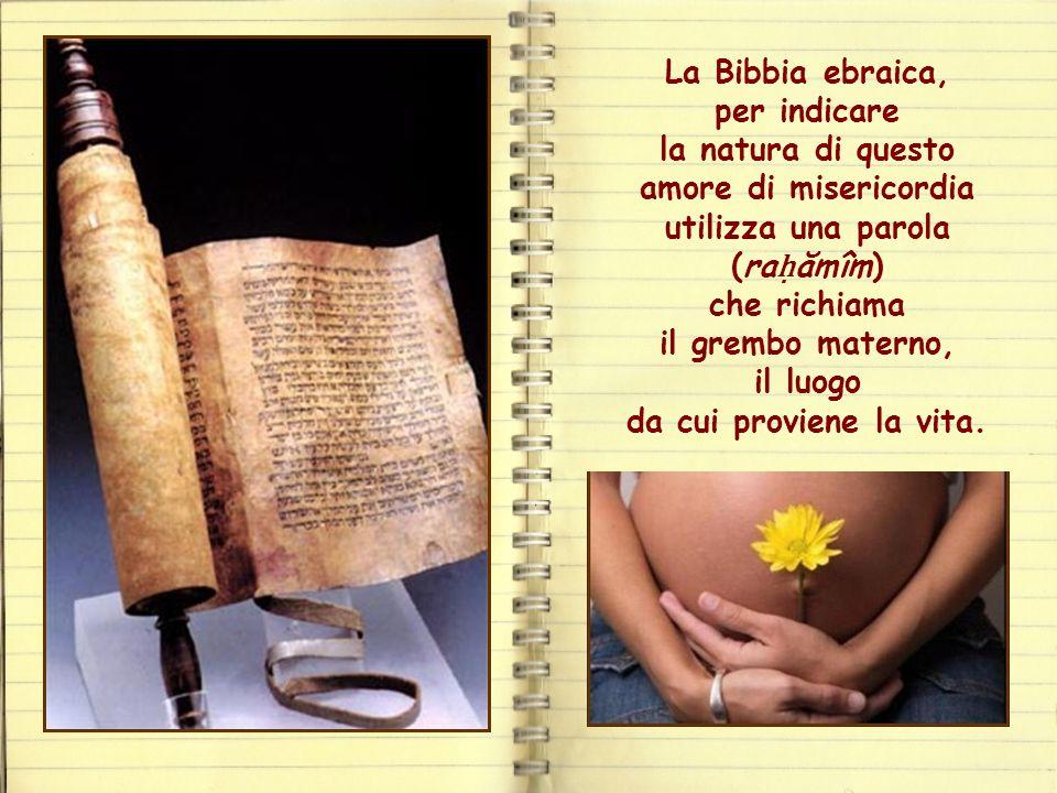 La Bibbia ebraica, per indicare la natura di questo amore di misericordia utilizza una parola (raḥămîm) che richiama il grembo materno, il luogo da cui proviene la vita.