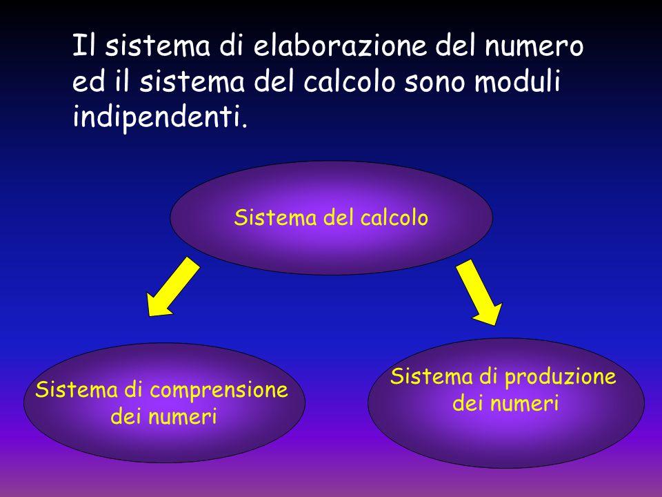 Sistema di comprensione