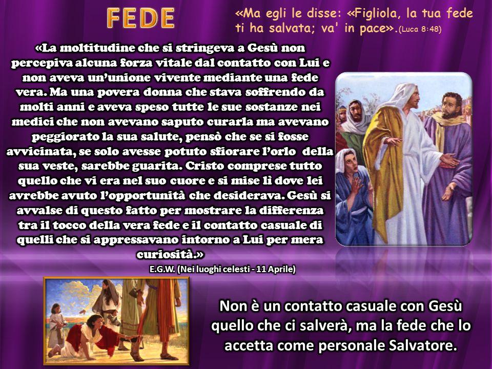 FEDE «Ma egli le disse: «Figliola, la tua fede ti ha salvata; va in pace».(Luca 8:48)