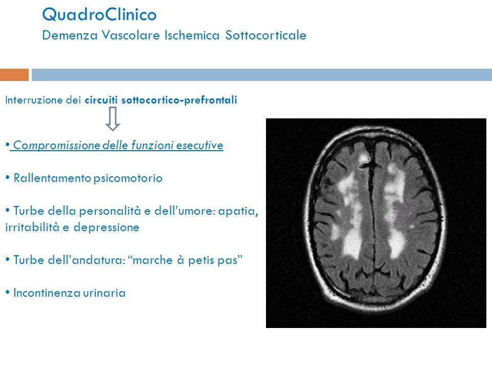 QuadroClinico Demenza Vascolare Ischemica Sottocorticale