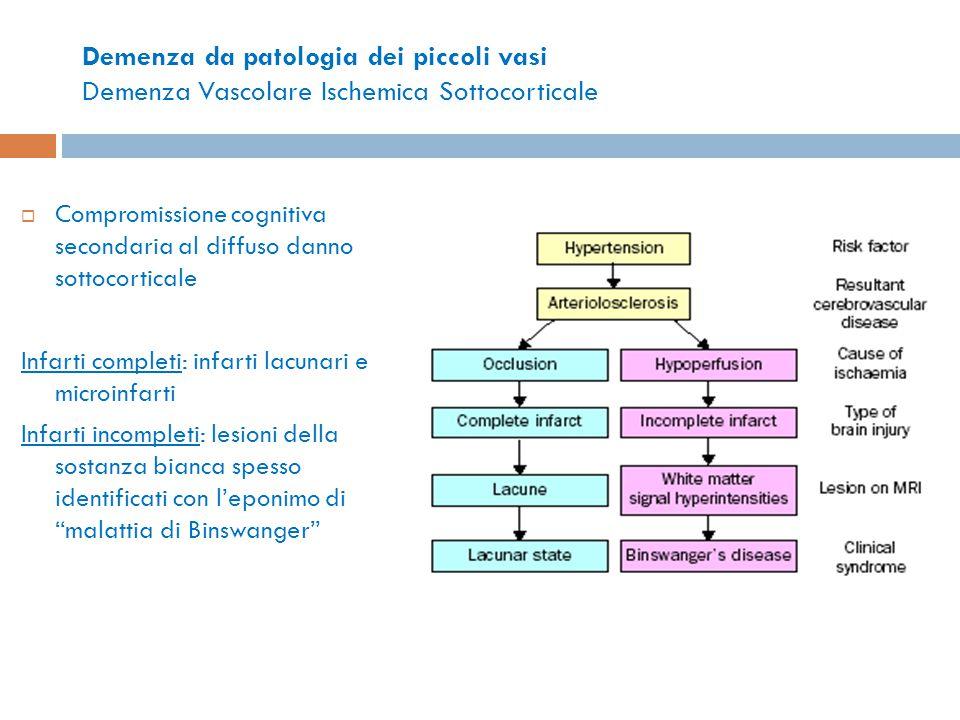 Demenza da patologia dei piccoli vasi Demenza Vascolare Ischemica Sottocorticale