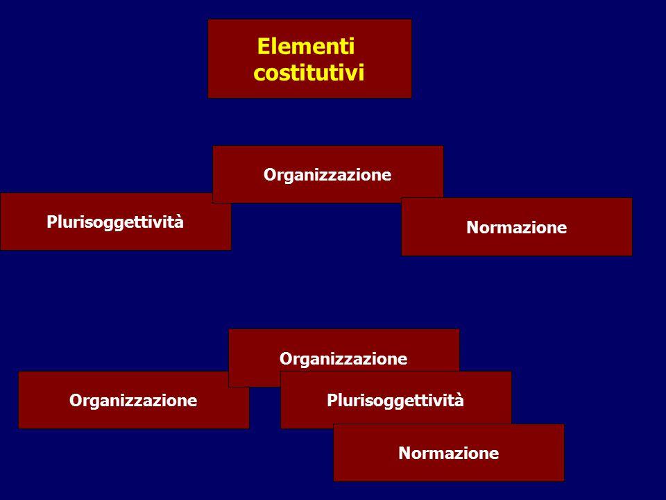 Elementi costitutivi Organizzazione Plurisoggettività Normazione