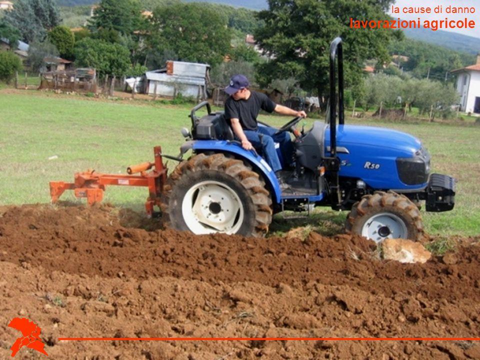lavorazioni agricole la cause di danno