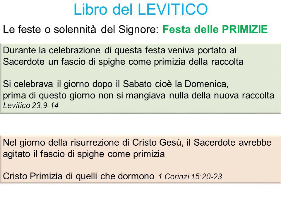 Libro del LEVITICO Le feste o solennità del Signore: Festa delle PRIMIZIE.