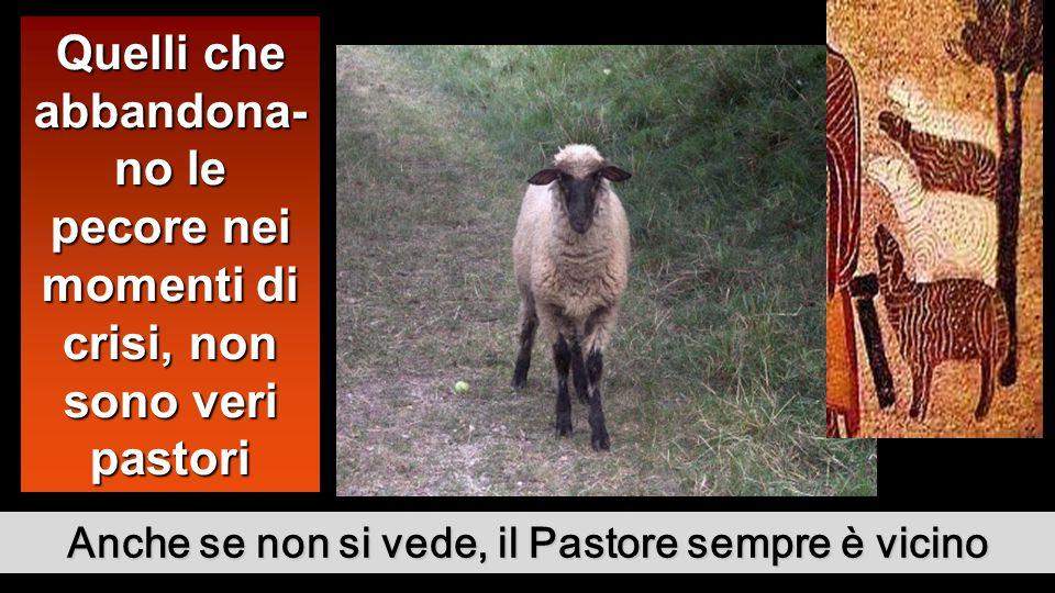 Anche se non si vede, il Pastore sempre è vicino