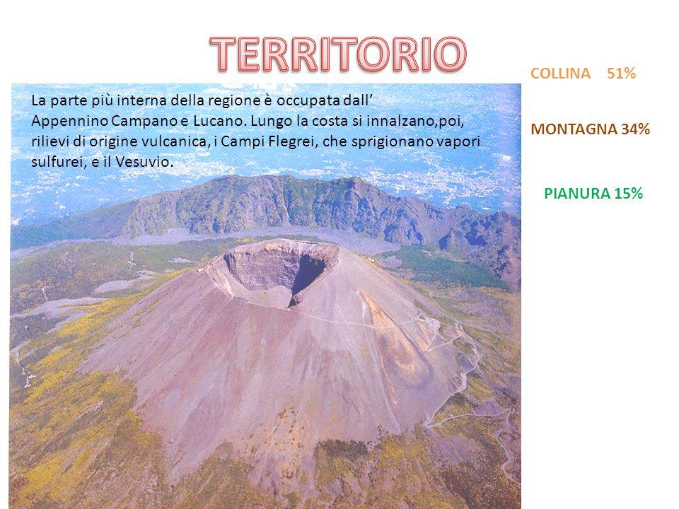 TERRITORIO COLLINA 51% La parte più interna della regione è occupata dall'