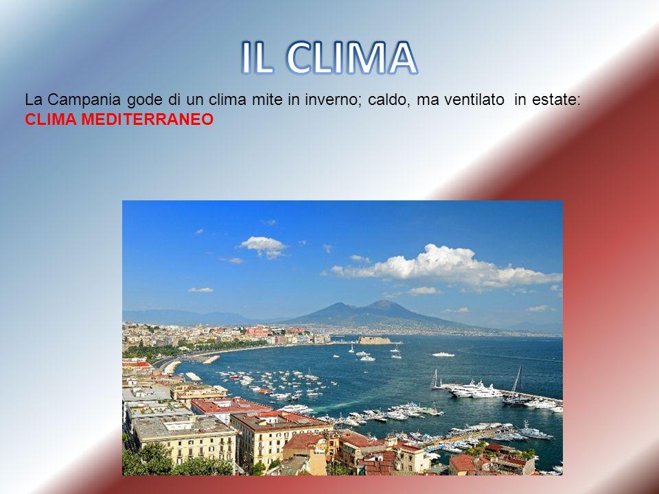 IL CLIMA La Campania gode di un clima mite in inverno; caldo, ma ventilato in estate: CLIMA MEDITERRANEO.