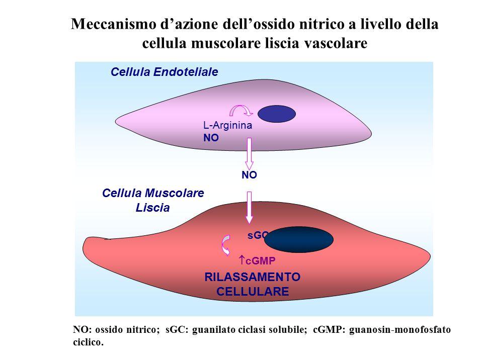 Cellula Muscolare Liscia RILASSAMENTO CELLULARE