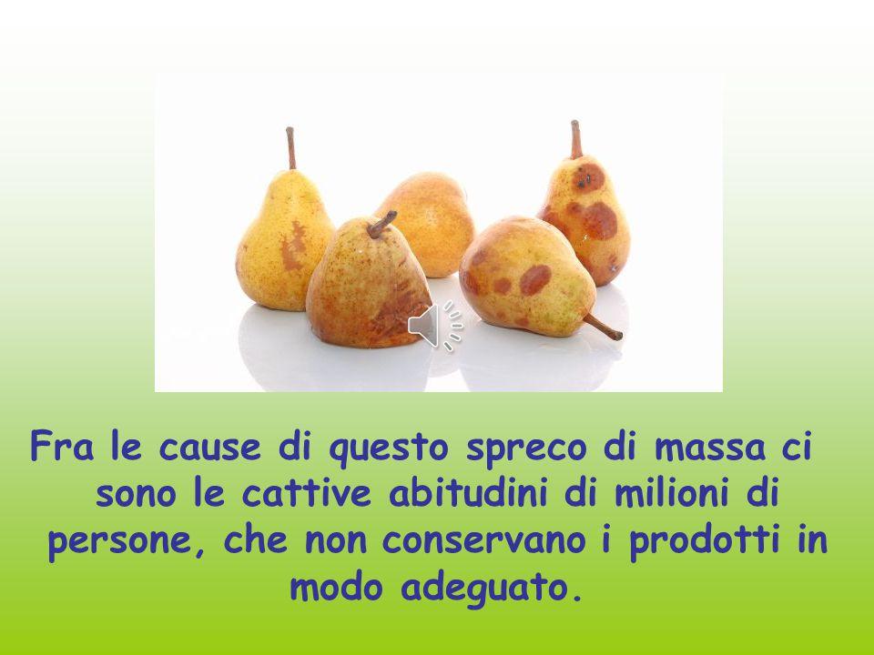 Fra le cause di questo spreco di massa ci sono le cattive abitudini di milioni di persone, che non conservano i prodotti in modo adeguato.