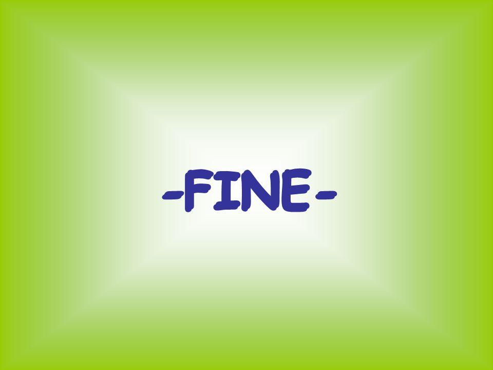 -FINE- -FINE-