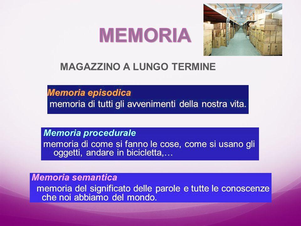 MEMORIA MAGAZZINO A LUNGO TERMINE