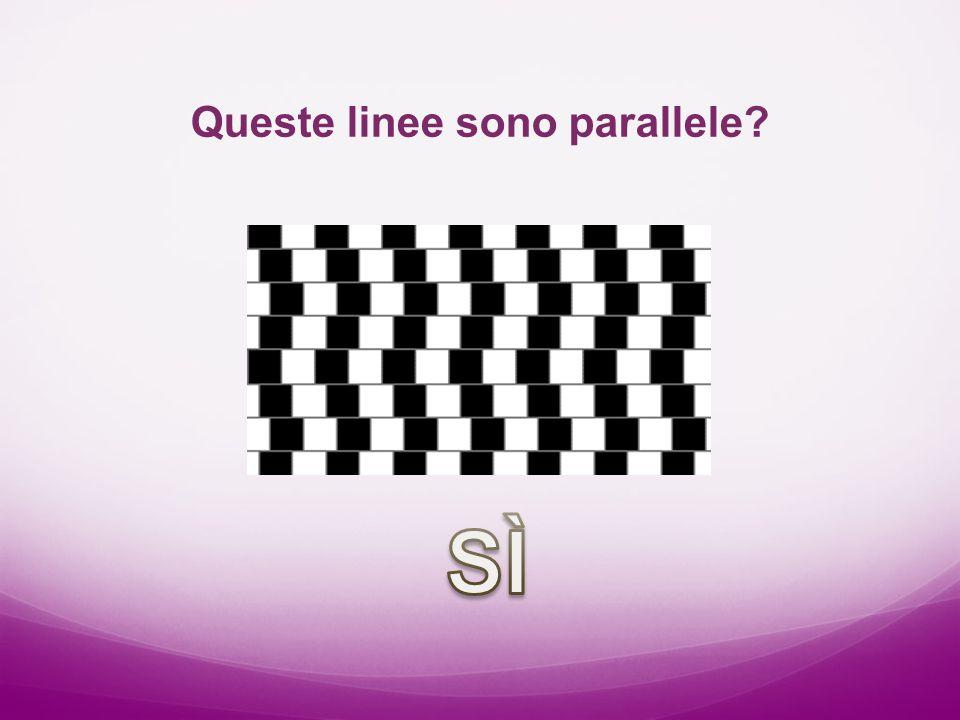 Queste linee sono parallele