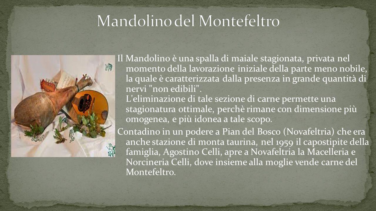 Mandolino del Montefeltro
