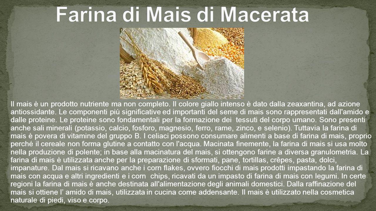 Farina di Mais di Macerata