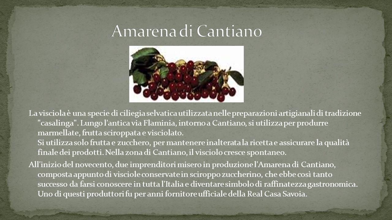 Amarena di Cantiano