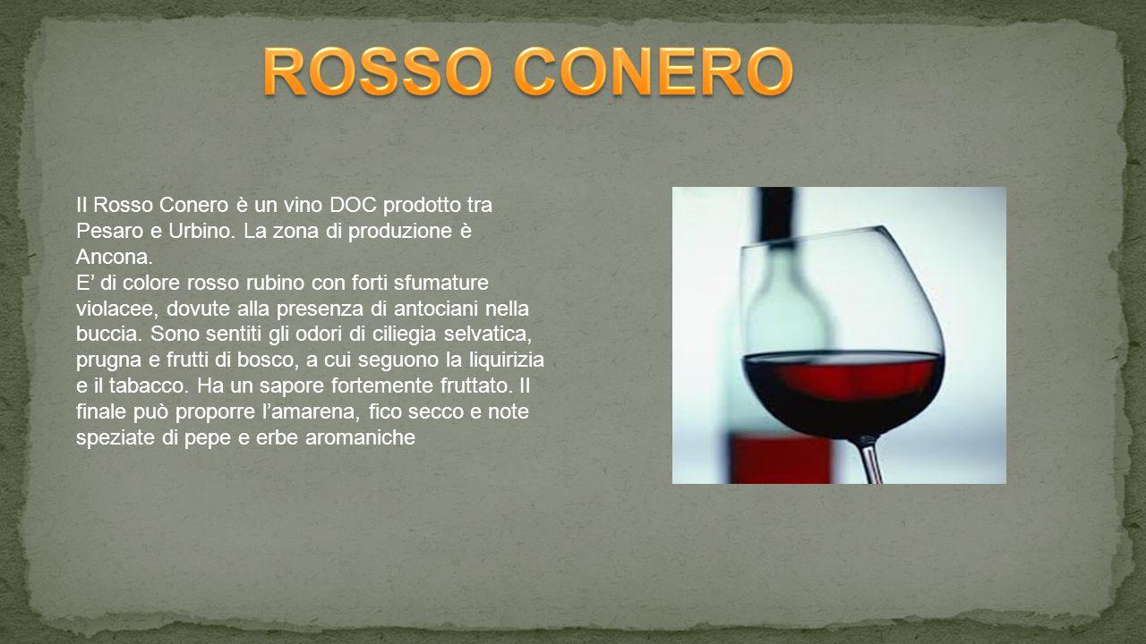 ROSSO CONERO Il Rosso Conero è un vino DOC prodotto tra Pesaro e Urbino. La zona di produzione è Ancona.