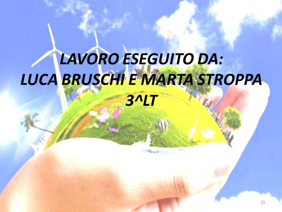 LAVORO ESEGUITO DA: LUCA BRUSCHI E MARTA STROPPA 3^LT