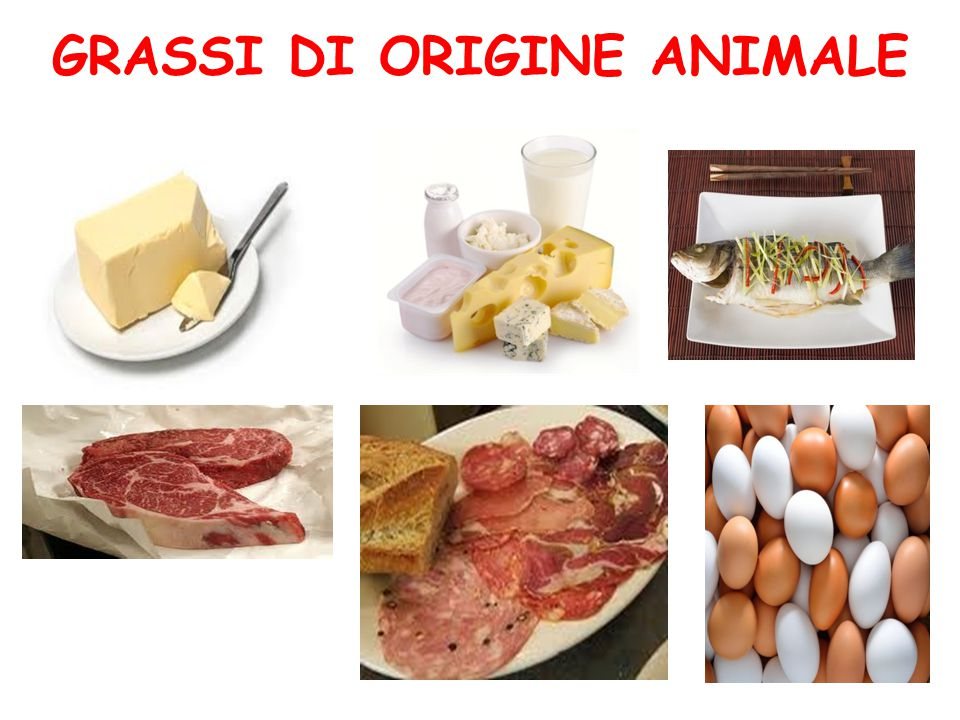 GRASSI DI ORIGINE ANIMALE
