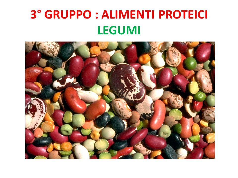3° gruppo : Alimenti proteici legumi