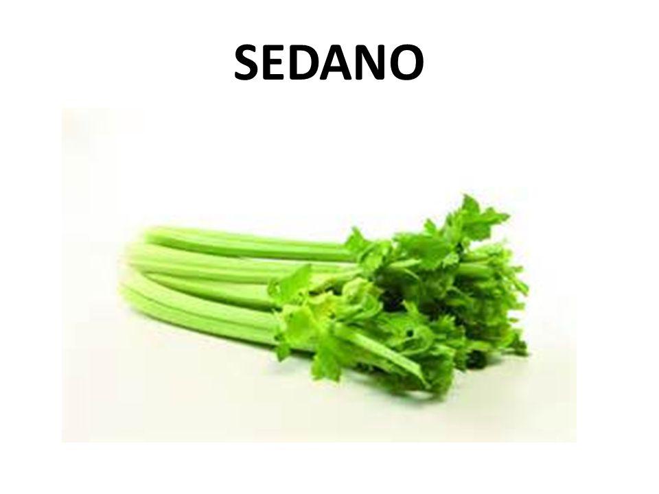 SEDANO