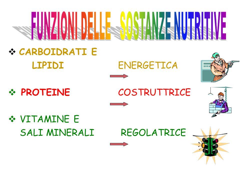 FUNZIONI DELLE SOSTANZE NUTRITIVE