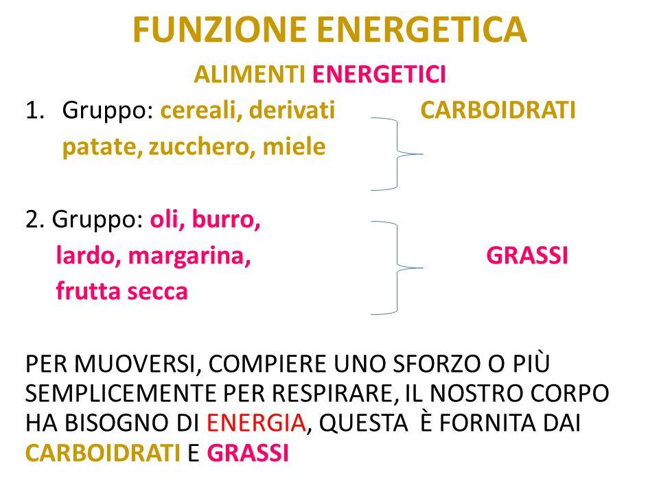 Funzione energetica Alimenti energetici