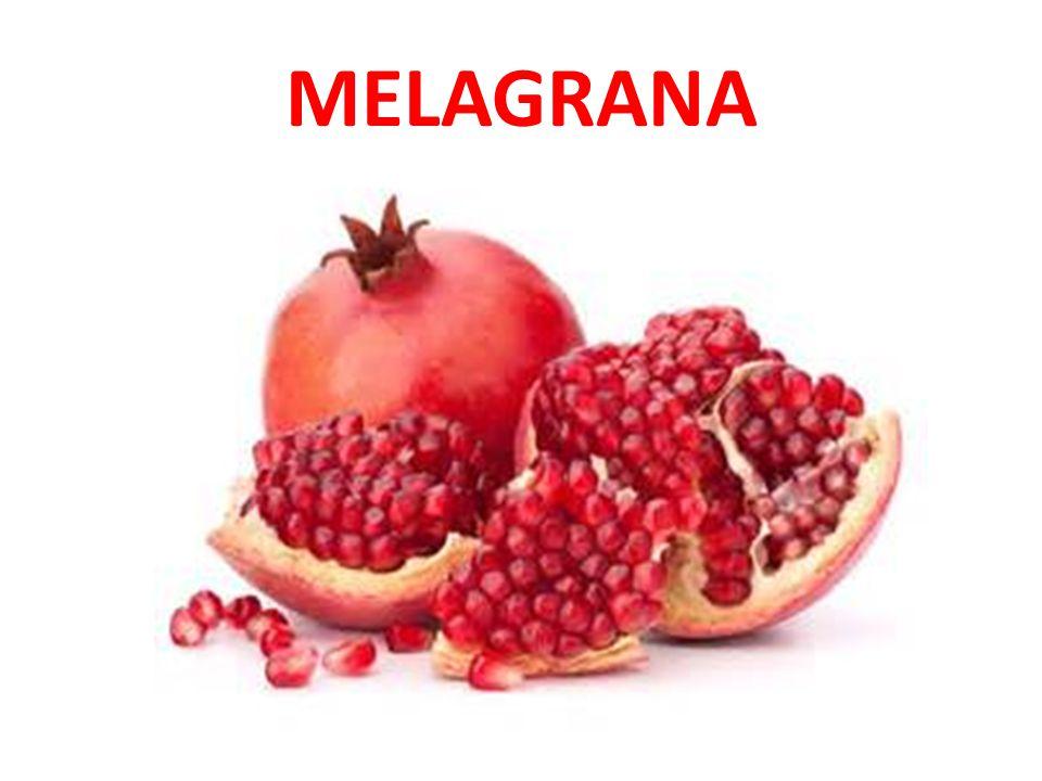 MELAGRANA