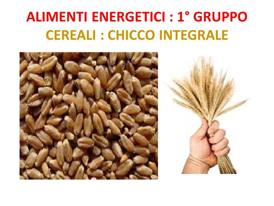 Alimenti energetici : 1° gruppo Cereali : chicco integrale
