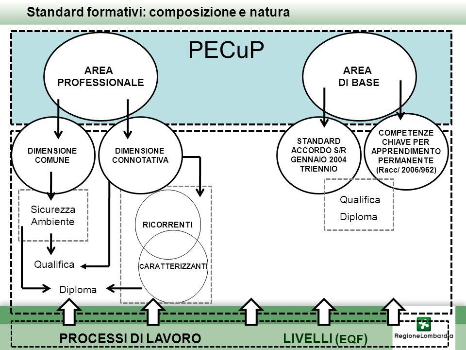 PECuP Standard formativi: composizione e natura PROCESSI DI LAVORO