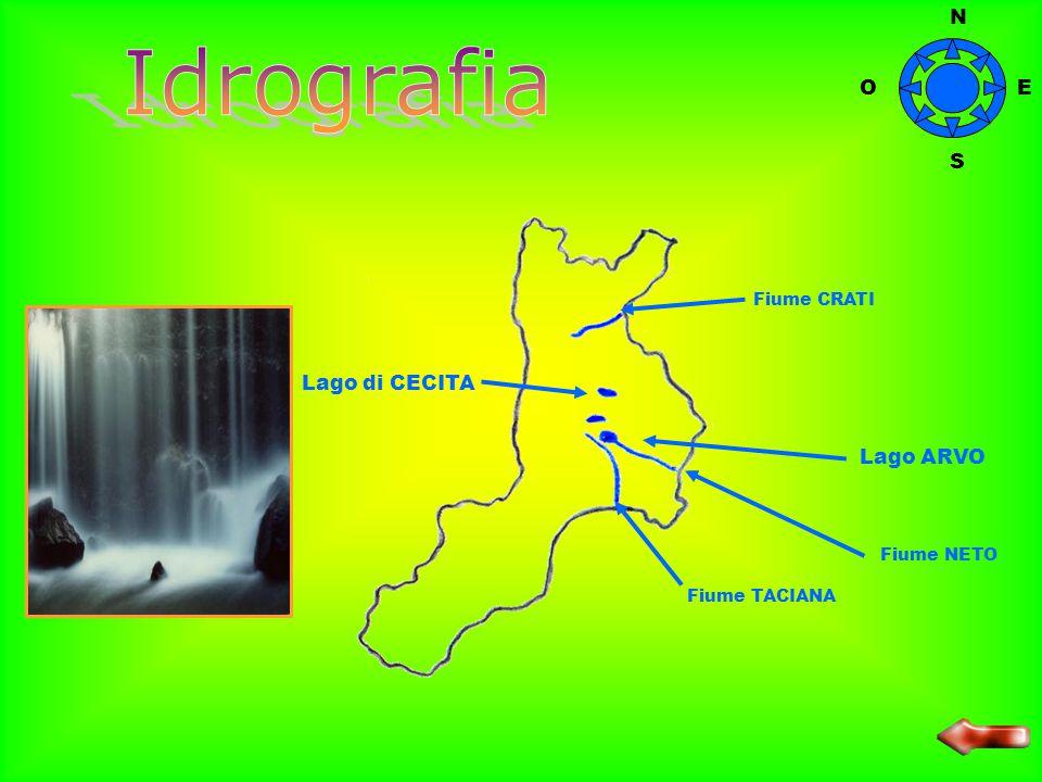 Idrografia N O E S Lago di CECITA Lago ARVO Fiume CRATI Fiume NETO