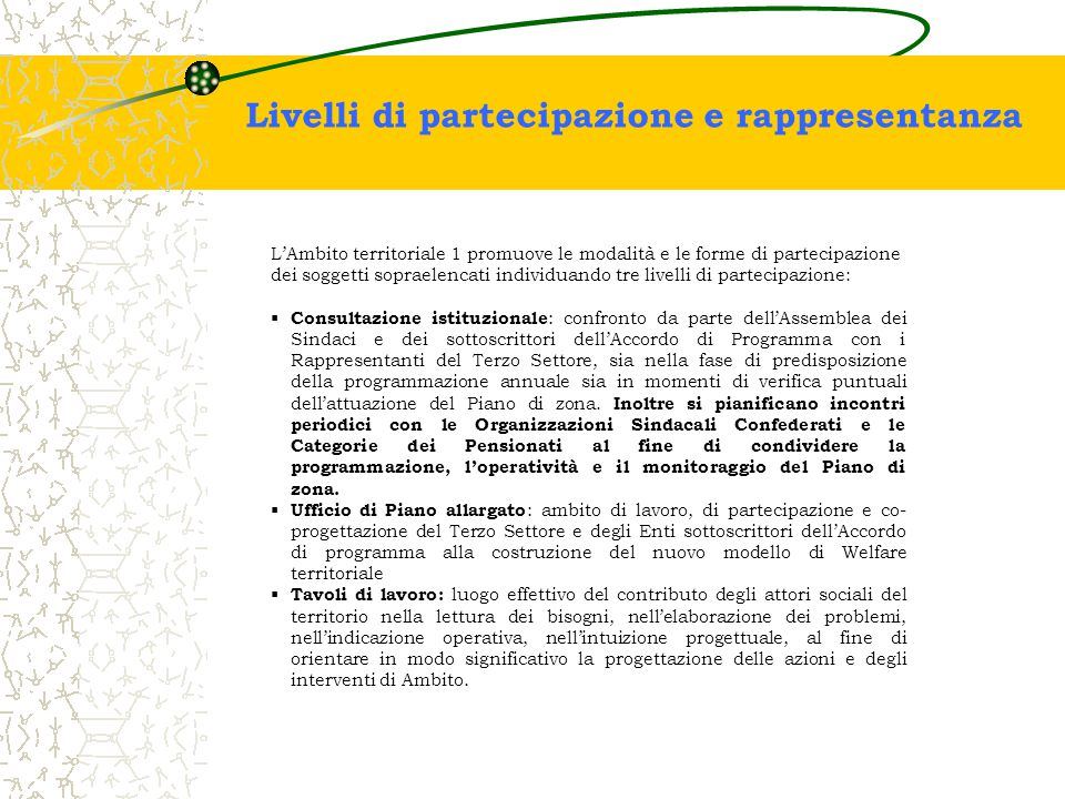 Livelli di partecipazione e rappresentanza