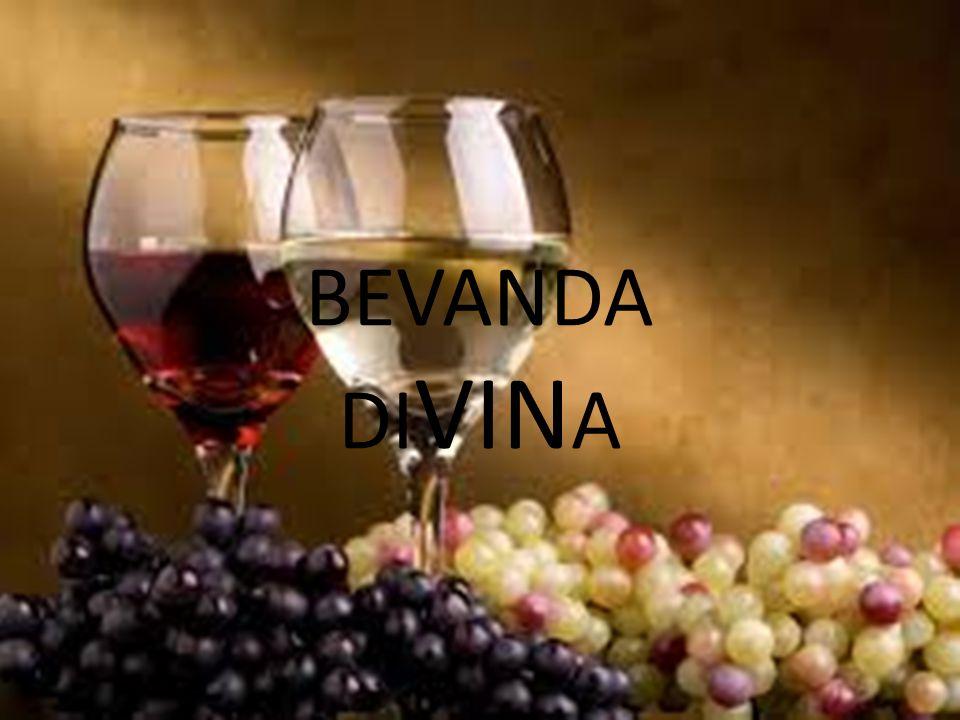 BEVANDA DIVINA