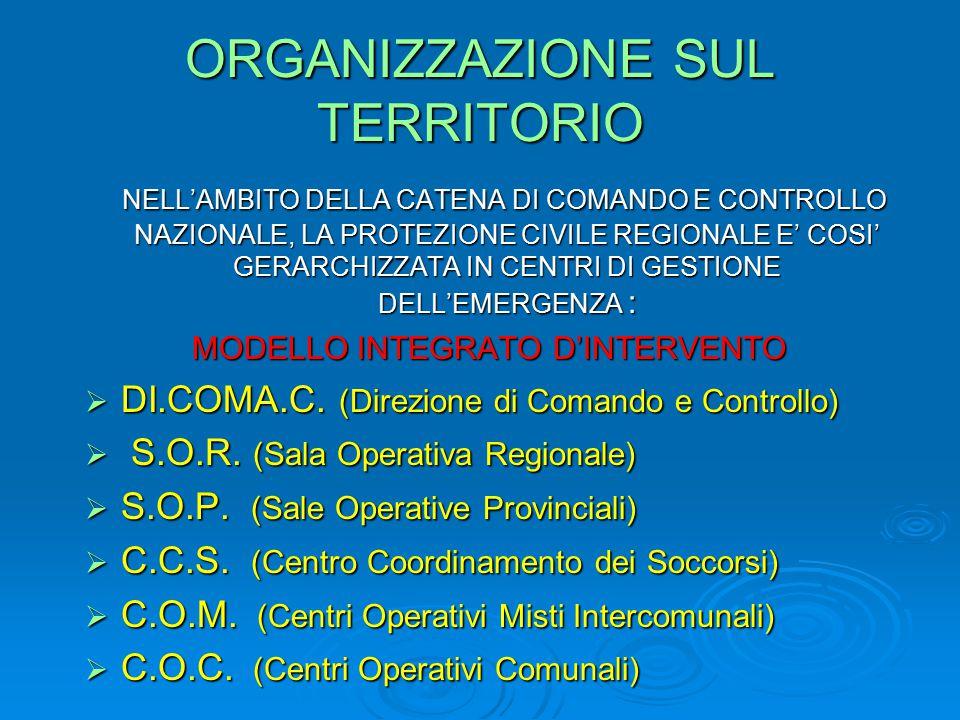 ORGANIZZAZIONE SUL TERRITORIO