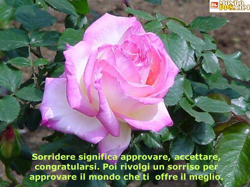 Sorridere significa approvare, accettare, congratularsi