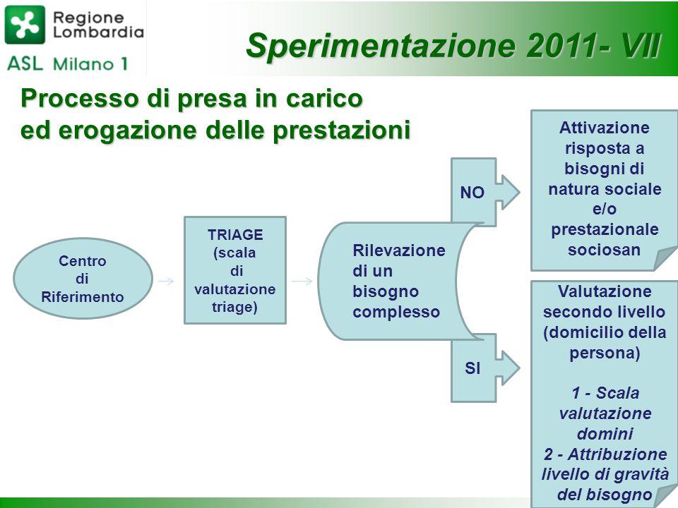 Sperimentazione 2011- VII Processo di presa in carico