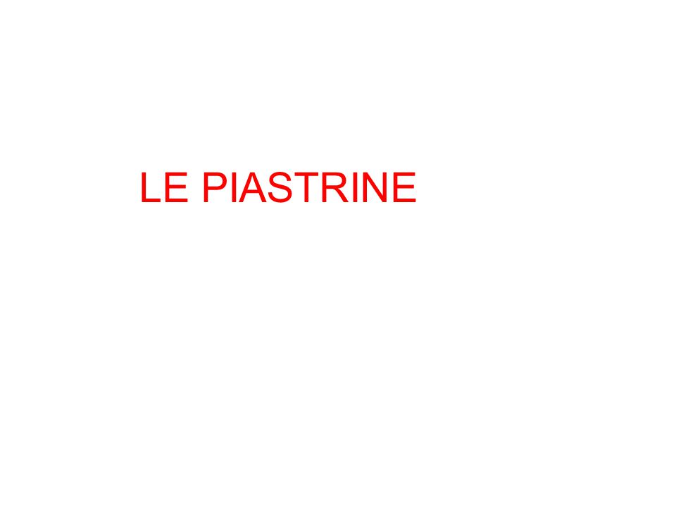 LE PIASTRINE