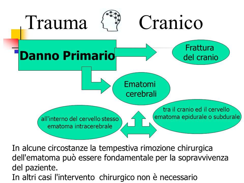 Trauma Cranico Danno Primario Frattura del cranio Ematomi cerebrali