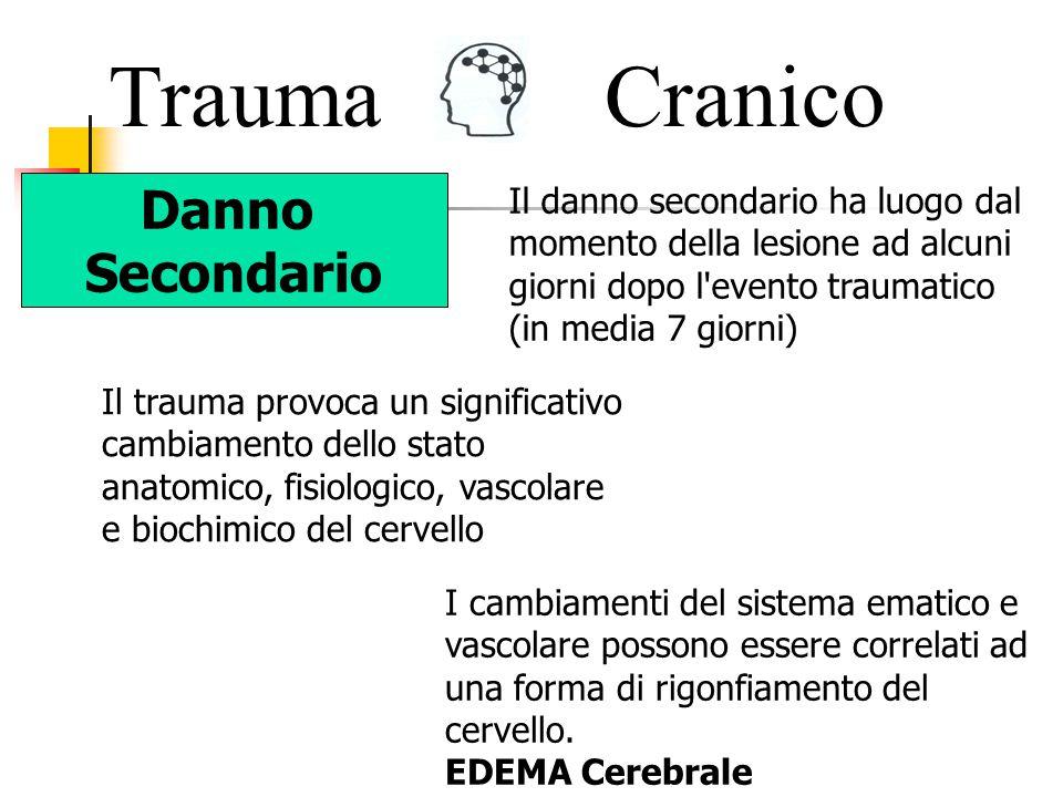Trauma Cranico Danno Secondario
