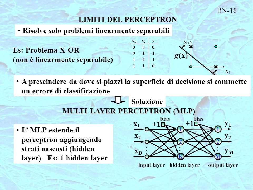 MULTI LAYER PERCEPTRON (MLP)