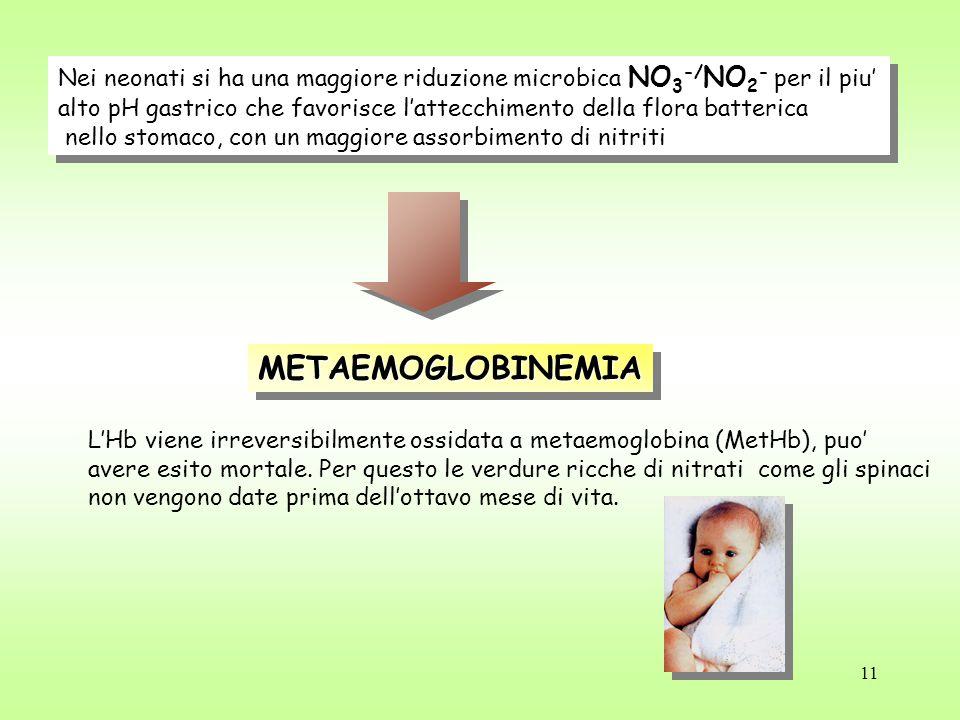 Nei neonati si ha una maggiore riduzione microbica NO3-/NO2- per il piu'
